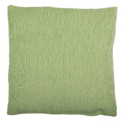Pale Green (Textured) Scatter Cushion