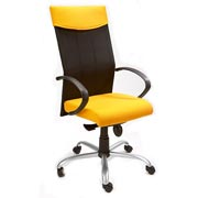 T2000 Highback Flexi Arm Chair