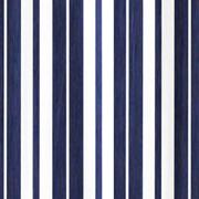 Blue and White Stripe Print Runner