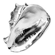 Ceramic Shell Silver