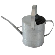 Galvanised Watering Can Small