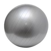 Gym Ball Silver A