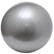 Gym Ball Silver B