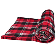Picnic Blanket A