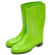 Wellington Boots Lime Free Size