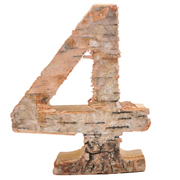 Wood Number 4