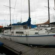 41 Amel Euros - MON41-0394