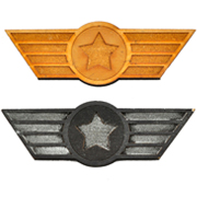 Aviation Wings Badge
