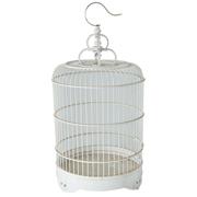 Bird Cage A