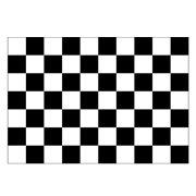 Black & White Checked Flag