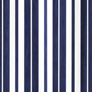 Blue and White Stripe Print Runner
