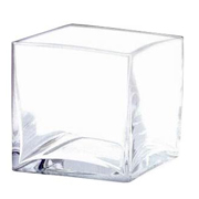 Glass Cube Vase 18cm