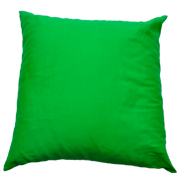 Green Twill Cushion