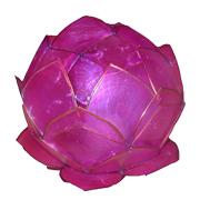 Magenta Capiz Shell Lotus Lantern