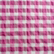 Overlay Gingham Pink and White Rectangle