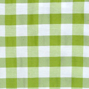 Overlay Gingham Green and White Large