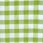 Overlay Gingham Green and White Medium