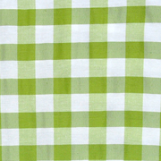 Overlay Gingham Green and White Small