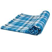 Picnic Blanket C