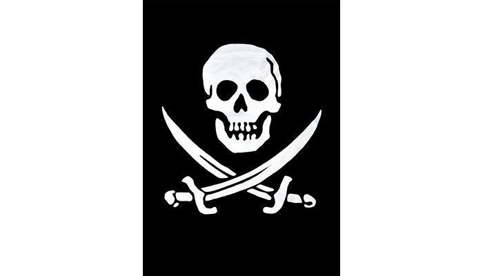 Pirate Flag Skull