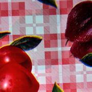 Spaza Plastic Overlay C