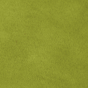 Suede Runner Olive Green