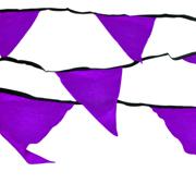Taffeta Bunting Purple