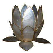White Capiz Shell Lotus Shell B