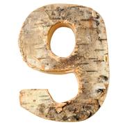 Wood Number 9