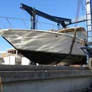 46 Searay - MTB47-0067